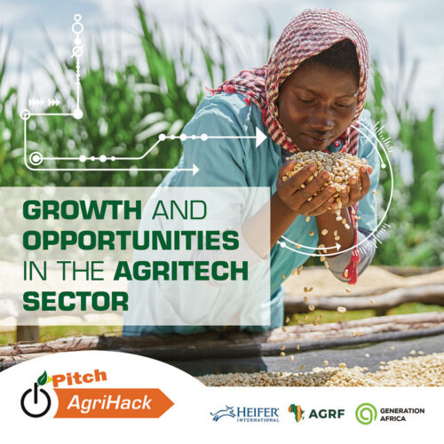 Growth and Opportunities in African Agritech