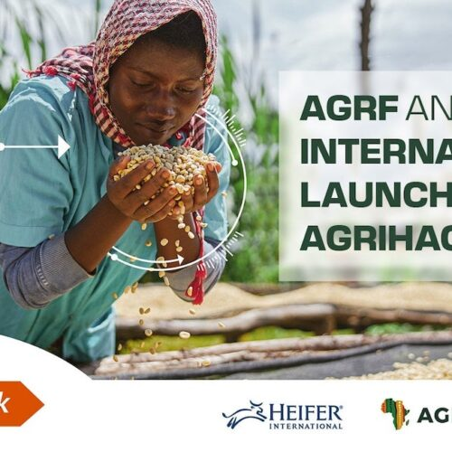 AGRF and Heifer International Launch Pitch AgriHack 2021